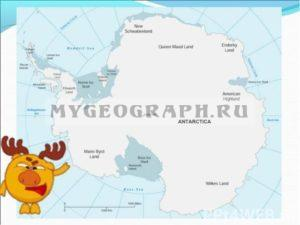 смешарик-антарктида