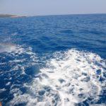 Вода в море необыкновенного цвета