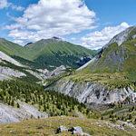 Южная Сибирь