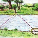 ширина реки