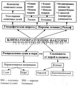 Кислотообразующие факторы Схема