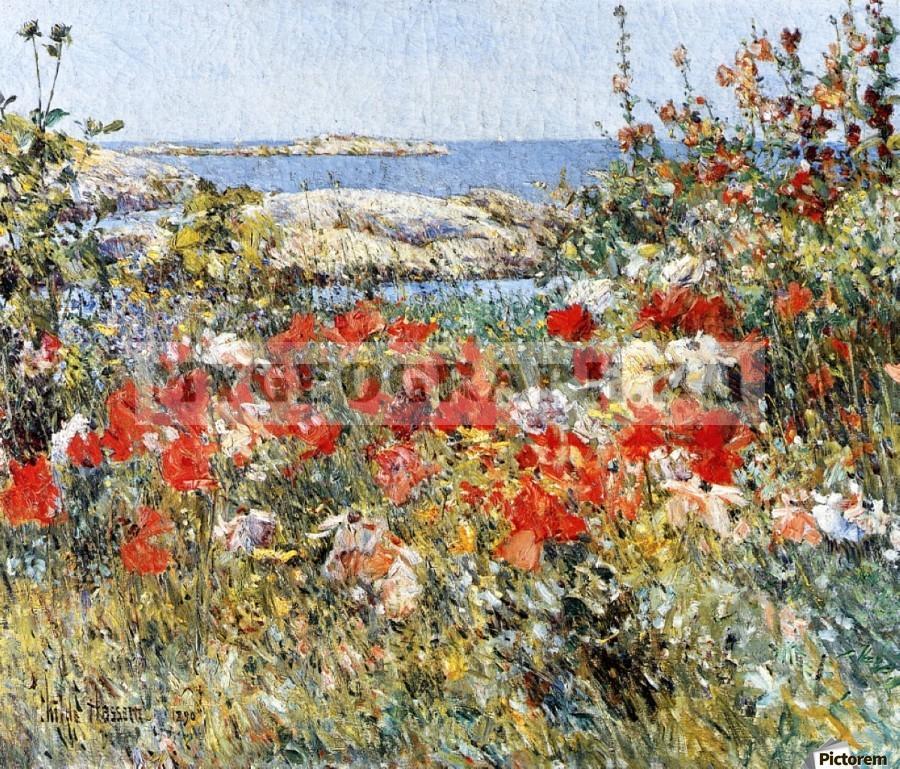 Это изображение имеет пустой атрибут alt; его имя файла - 900_Flower-Garden-Isles-of-Shoals.jpg